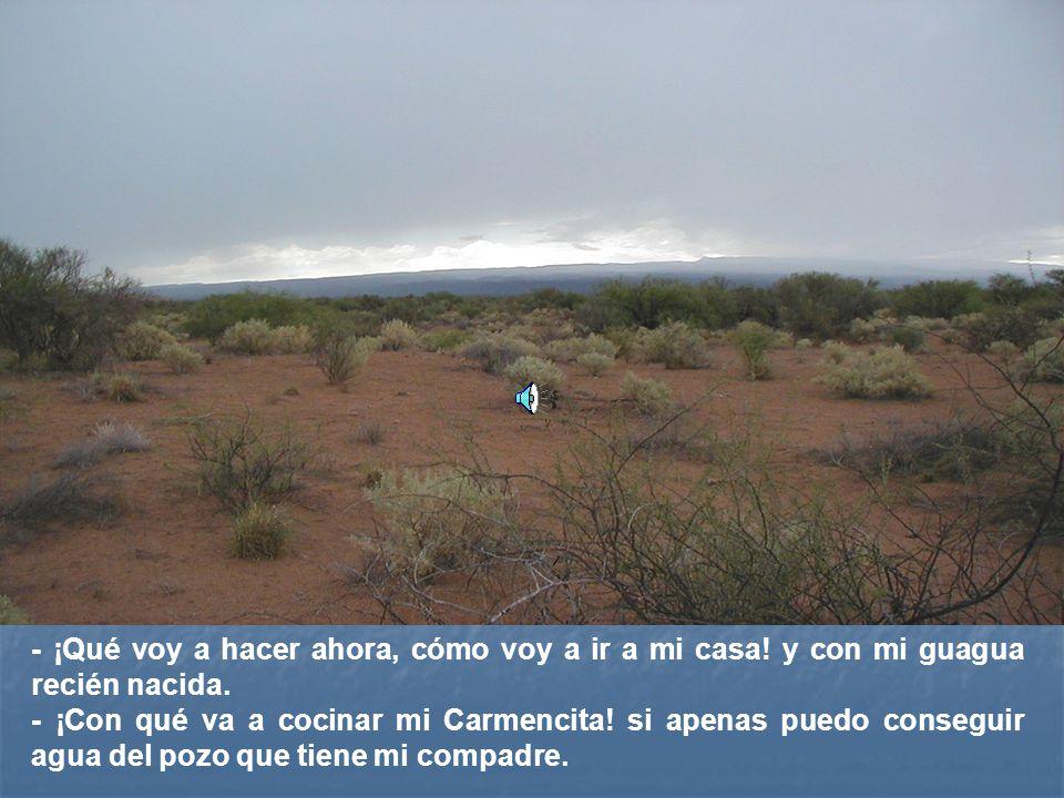 -El paisaje se ve tan árido, cierro los ojos y aún veo las alfombras multicolores que formaban nuestras tierras ¡todas sembradas.