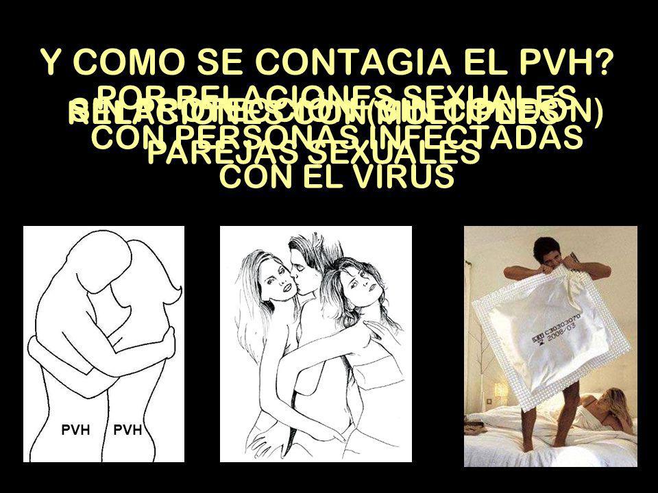 PAPILOMA VIRUS HUMANO Conocido como PVH por sus siglas