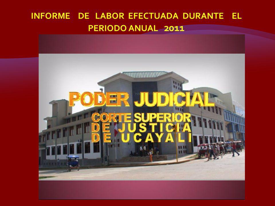 EXPEDIENTES EN EJECUCION 828 1000 20102011