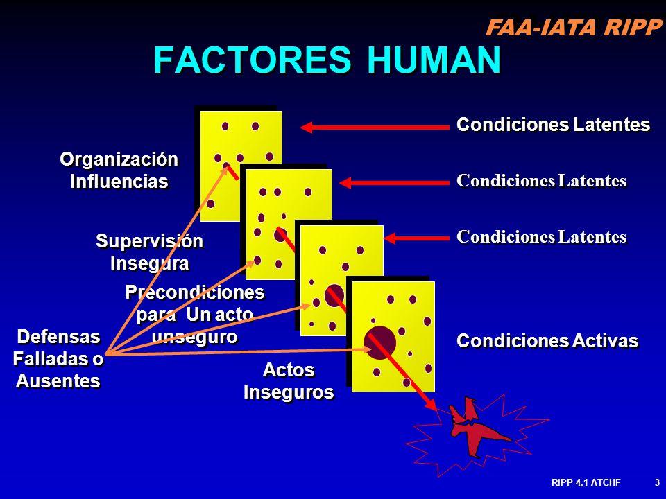 FAA-IATA RIPP RIPP 4.1 ATCHF3 Organización Influencias Supervisión Insegura Precondiciones para Un acto unseguro Precondiciones para Un acto unseguro Actos Inseguros Actos Inseguros FACTORES HUMAN Condiciones Latentes Condiciones Activas Defensas Falladas o Ausentes Defensas Falladas o Ausentes