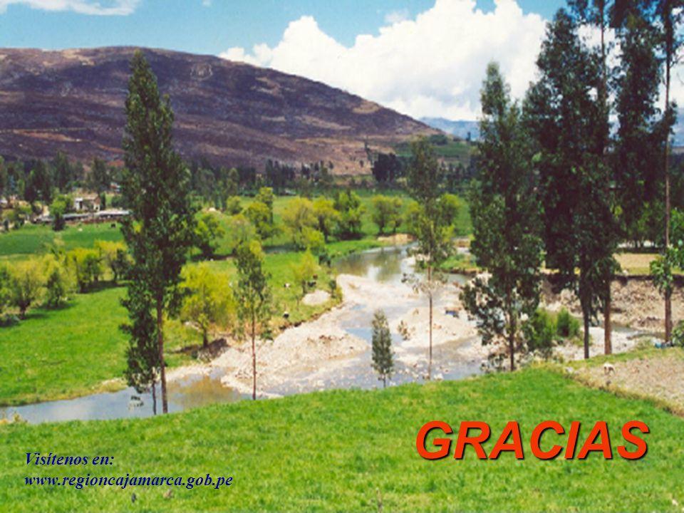 23 GRACIAS Visítenos en: www.regioncajamarca.gob.pe