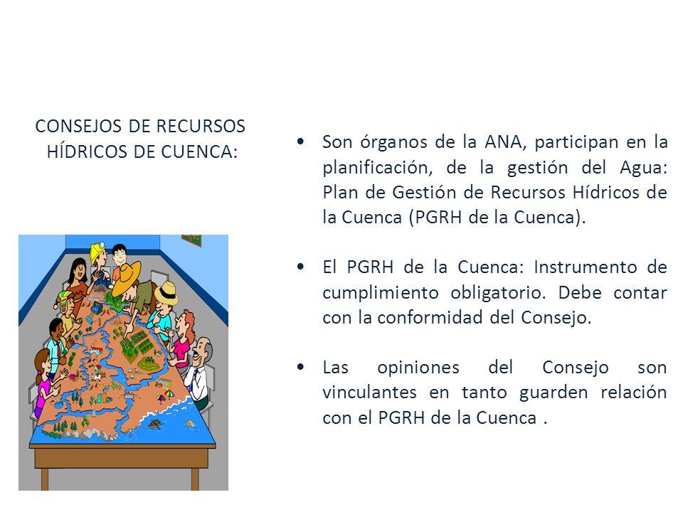 Son órganos de la ANA, participan en la planificación, de la gestión del Agua: Plan de Gestión de Recursos Hídricos de la Cuenca (PGRH de la Cuenca).