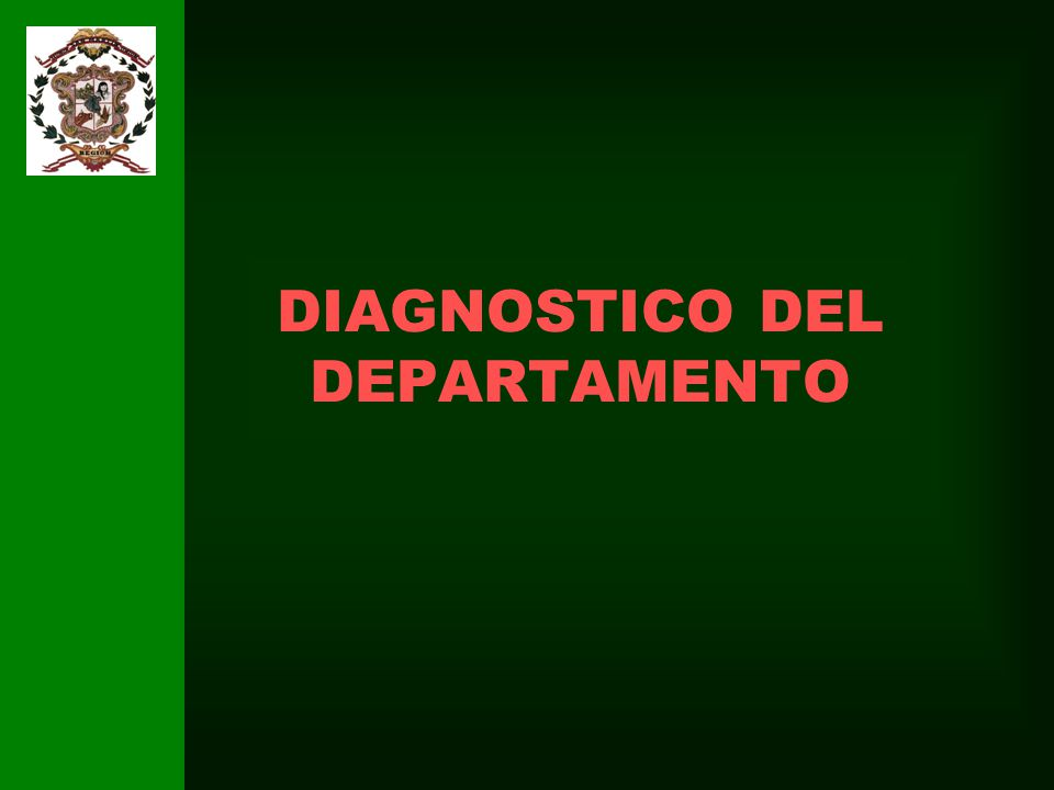 DIAGNOSTICO DEL DEPARTAMENTO