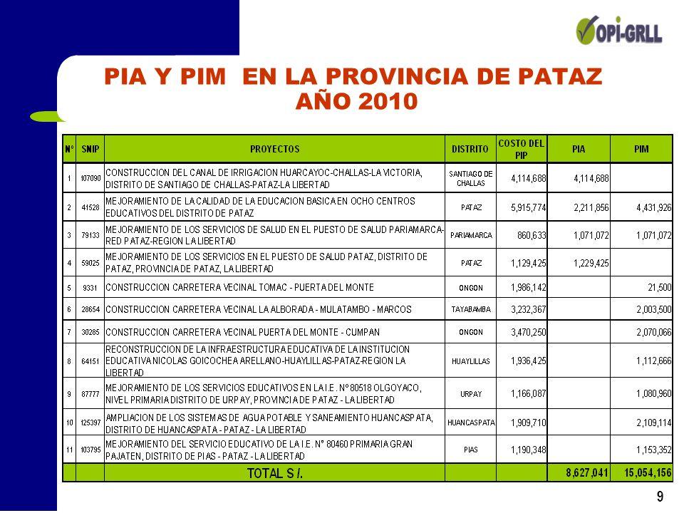 9 PIA Y PIM EN LA PROVINCIA DE PATAZ AÑO 2010