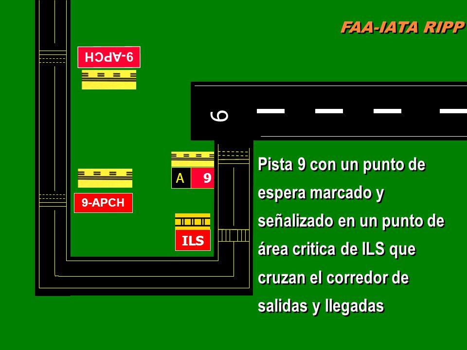 FAA-IATA RIPP RIPP 4.1 SM&L75 MARCAS DE PISTA Y LUCES FAA-IATA RIPP