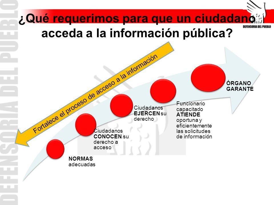 ¿Qué requerimos para que un ciudadano acceda a la información pública.