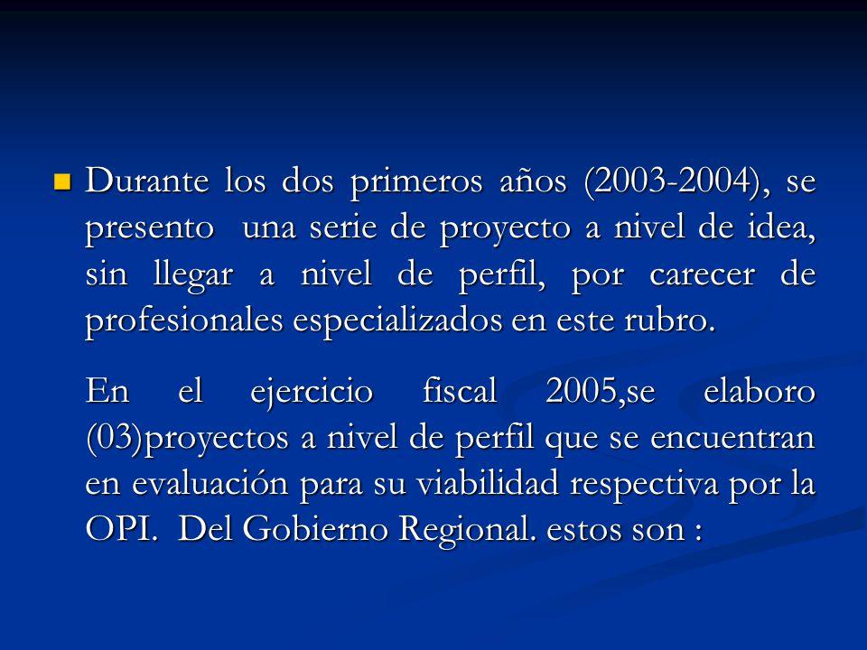 Durante los dos primeros años (2003-2004), se presento una serie de proyecto a nivel de idea, sin llegar a nivel de perfil, por carecer de profesional