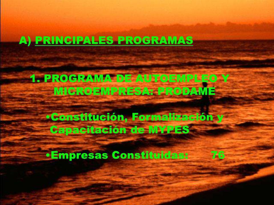 A) PRINCIPALES PROGRAMAS 1.