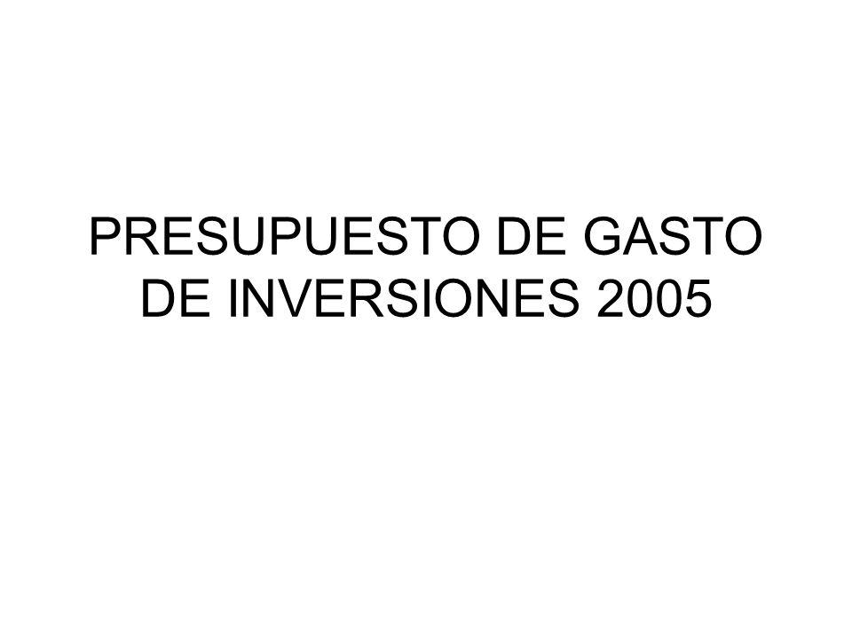 PRESUPUESTO DE GASTO DE INVERSIONES 2005