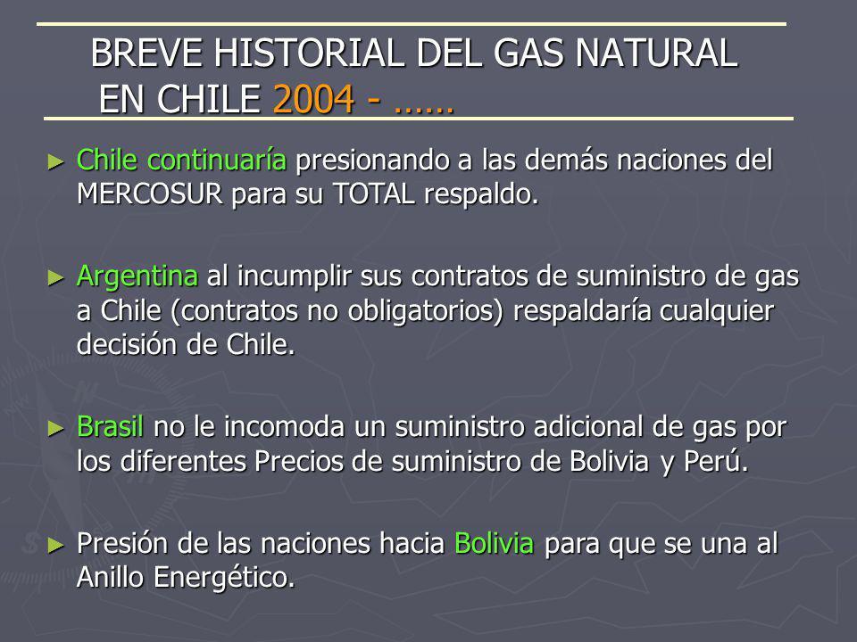 Chile continuaría presionando a las demás naciones del MERCOSUR para su TOTAL respaldo. Chile continuaría presionando a las demás naciones del MERCOSU