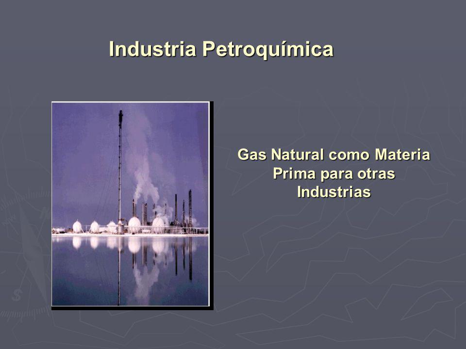 Gas Natural como Materia Prima para otras Industrias Industria Petroquímica