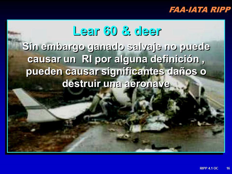 FAA-IATA RIPP RIPP 4.1 OC16 Sin embargo ganado salvaje no puede causar un RI por alguna definición, pueden causar significantes daños o destruir una aeronave Lear 60 & deer