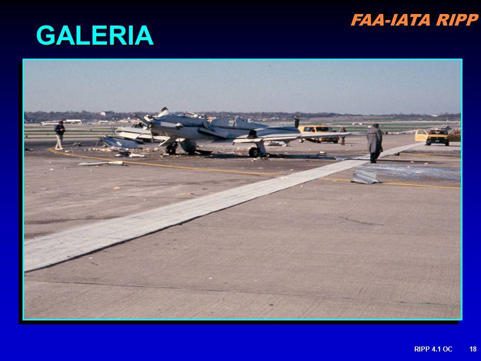 FAA-IATA RIPP RIPP 4.1 OC18 GALERIA