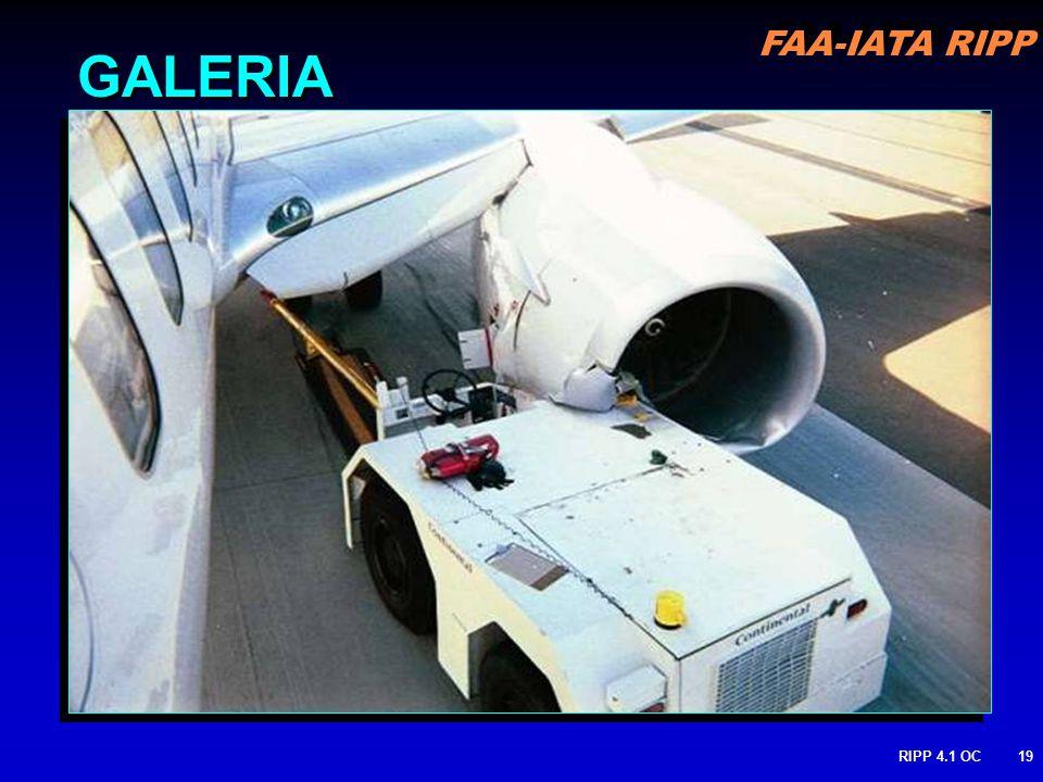 FAA-IATA RIPP RIPP 4.1 OC19 GALERIA