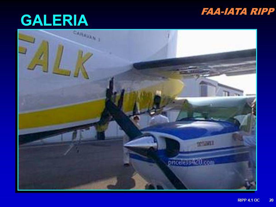 FAA-IATA RIPP RIPP 4.1 OC20 GALERIA