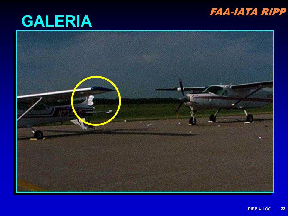 FAA-IATA RIPP RIPP 4.1 OC22 GALERIA