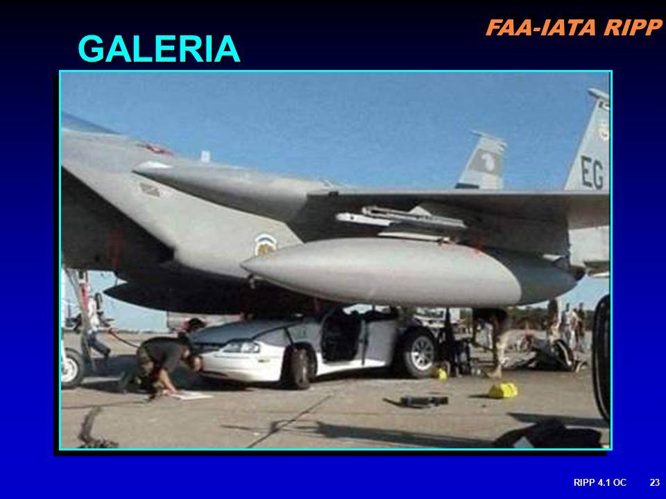 FAA-IATA RIPP RIPP 4.1 OC23 GALERIA