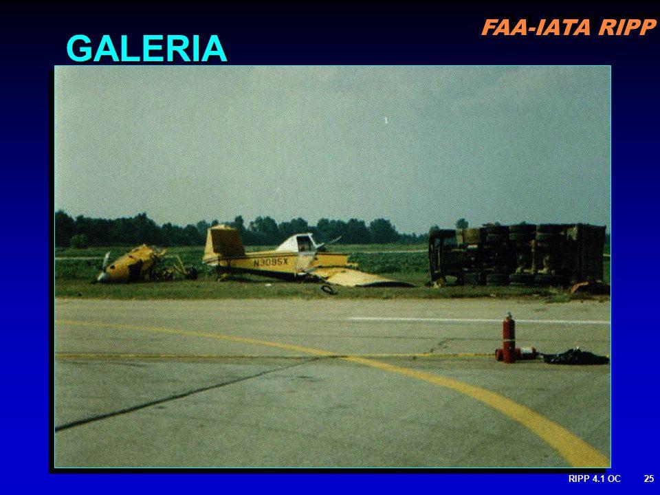 FAA-IATA RIPP RIPP 4.1 OC25 GALERIA