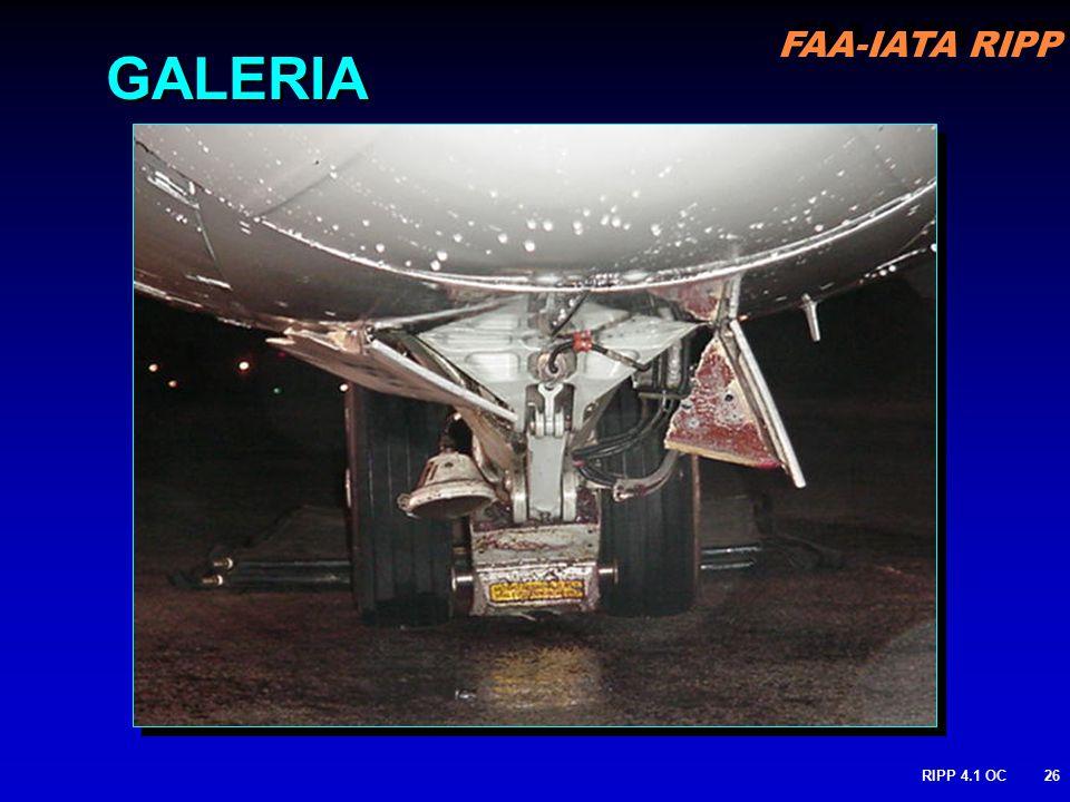 FAA-IATA RIPP RIPP 4.1 OC26 GALERIA