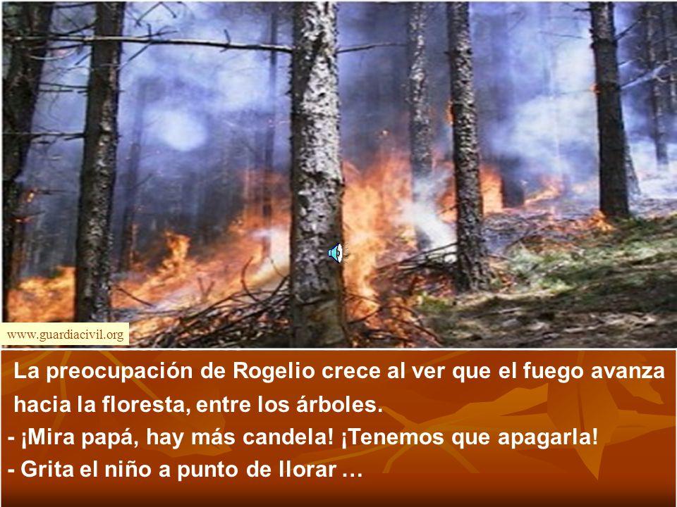 www.guardiacivil.org La preocupación de Rogelio crece al ver que el fuego avanza hacia la floresta, entre los árboles.