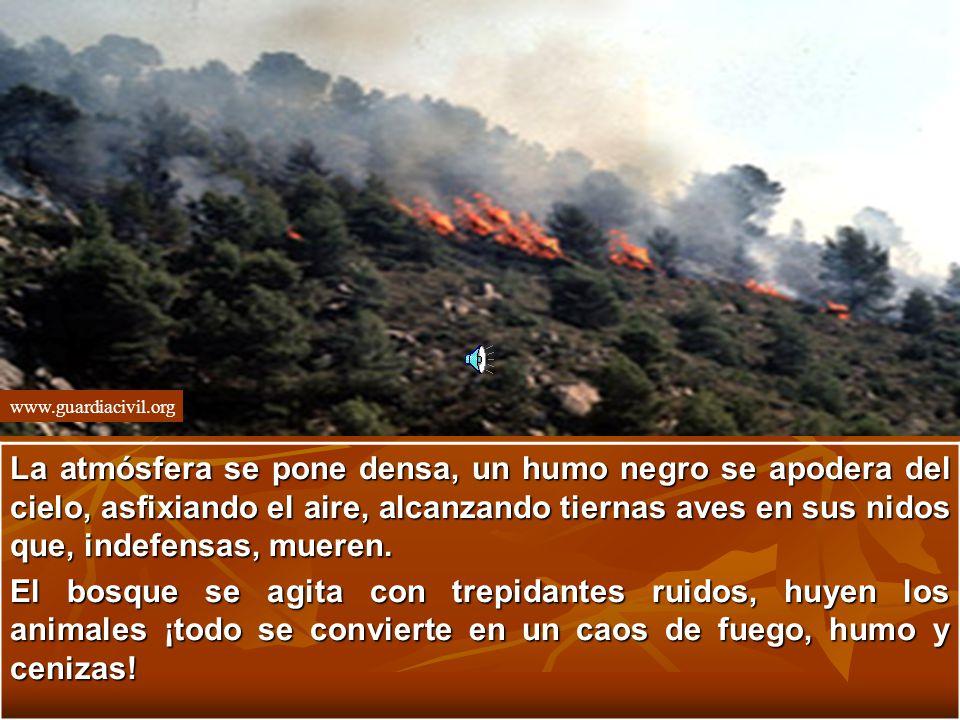 www.guardiacivil.org La atmósfera se pone densa, un humo negro se apodera del cielo, asfixiando el aire, alcanzando tiernas aves en sus nidos que, indefensas, mueren.