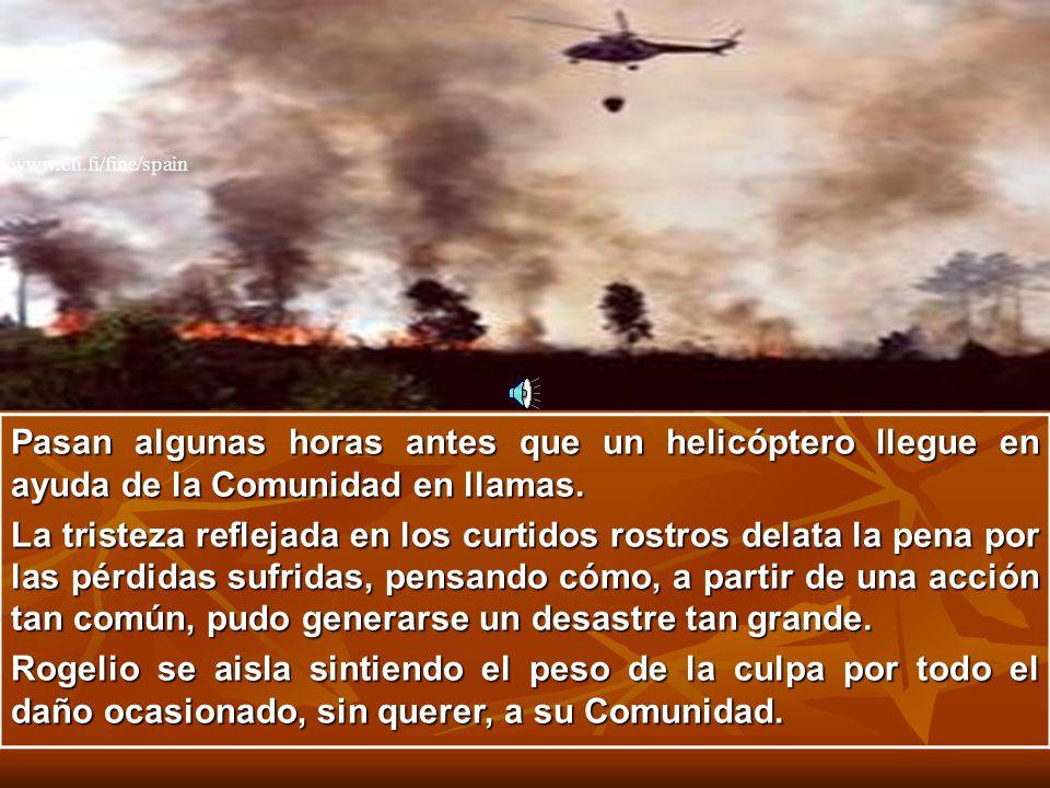 www.efi.fi/fine/spain Pasan algunas horas antes que un helicóptero llegue en ayuda de la Comunidad en llamas.