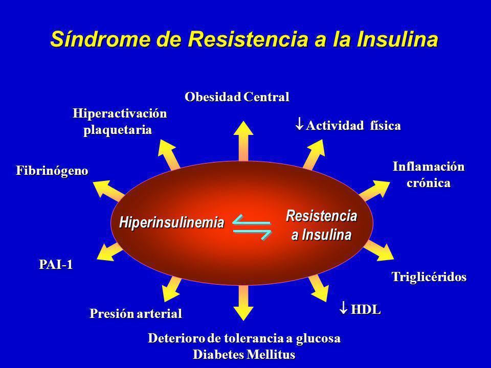 HDL HDL Hiperactivación Hiperactivaciónplaquetaria Presión arterial Presión arterial Deterioro de tolerancia a glucosa Diabetes Mellitus Fibrinógeno Fibrinógeno PAI-1 PAI-1 Triglicéridos Triglicéridos Obesidad Central Actividad física Actividad física Síndrome de Resistencia a la Insulina Inflamación crónica Resistencia a Insulina Hiperinsulinemia