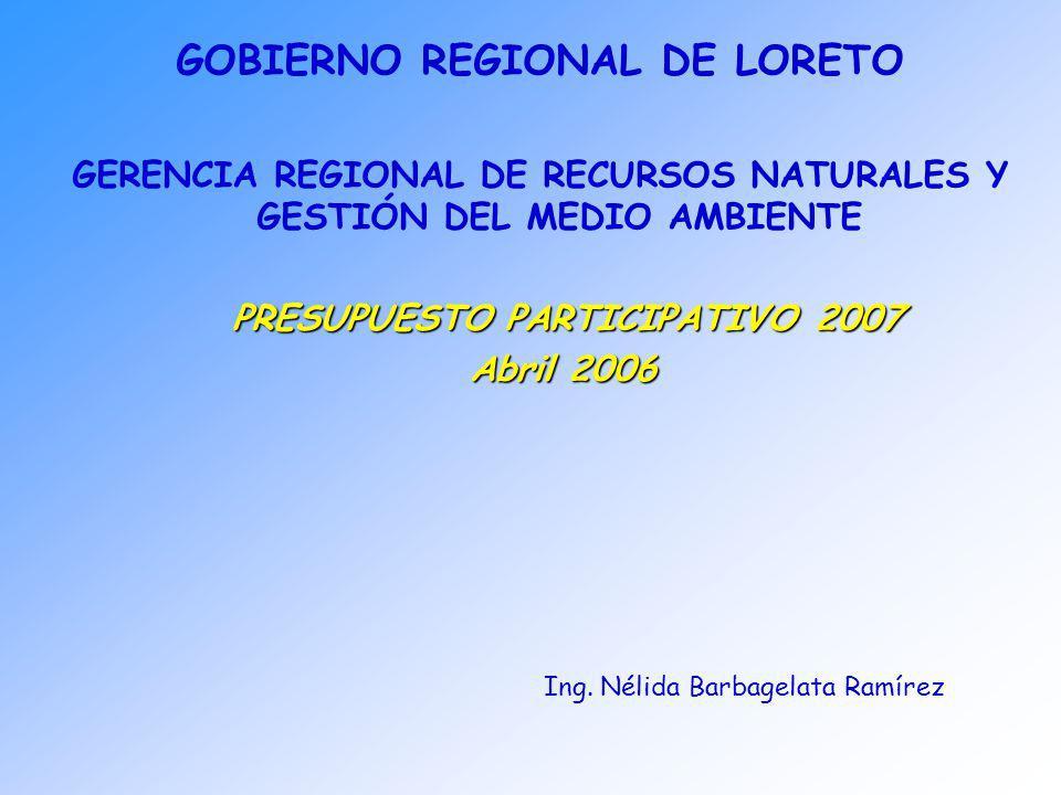 GOBIERNO REGIONAL DE LORETO GERENCIA REGIONAL DE RECURSOS NATURALES Y GESTIÓN DEL MEDIO AMBIENTE Ing. Nélida Barbagelata Ramírez PRESUPUESTO PARTICIPA