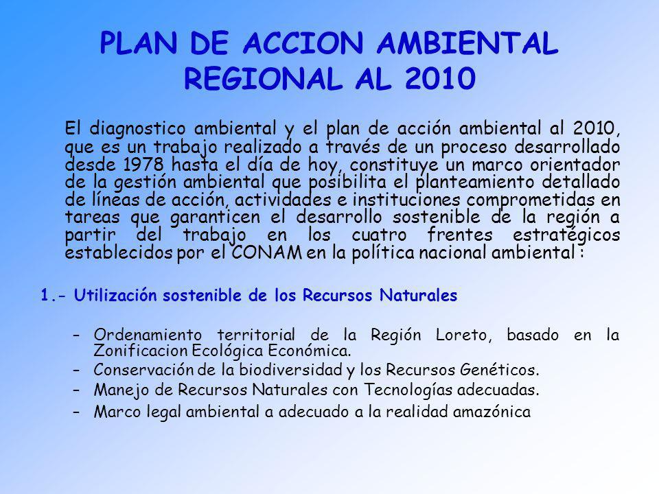 PLAN DE ACCION AMBIENTAL REGIONAL AL 2010 El diagnostico ambiental y el plan de acción ambiental al 2010, que es un trabajo realizado a través de un p
