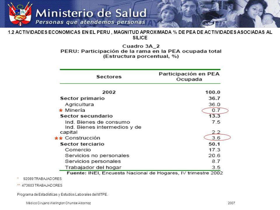 Programa de Estadísticas y Estudios Laborales del MTPE. 1.2 ACTIVIDADES ECONOMICAS EN EL PERU, MAGNITUD APROXIMADA % DE PEA DE ACTIVIDADES ASOCIADAS A