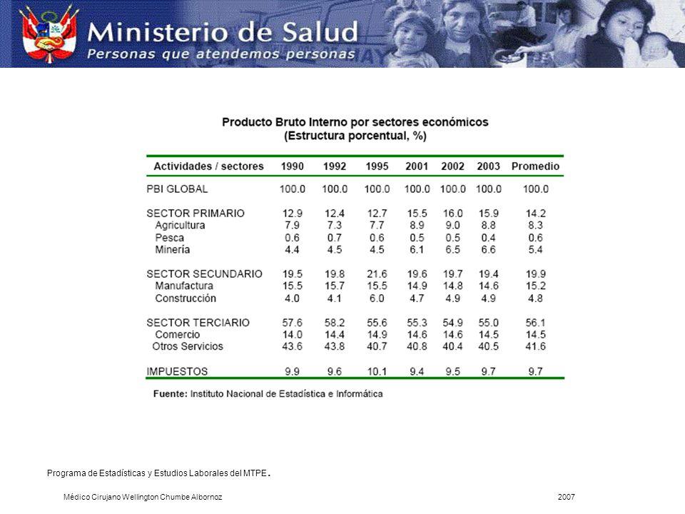Programa de Estadísticas y Estudios Laborales del MTPE. Médico Cirujano Wellington Chumbe Albornoz2007