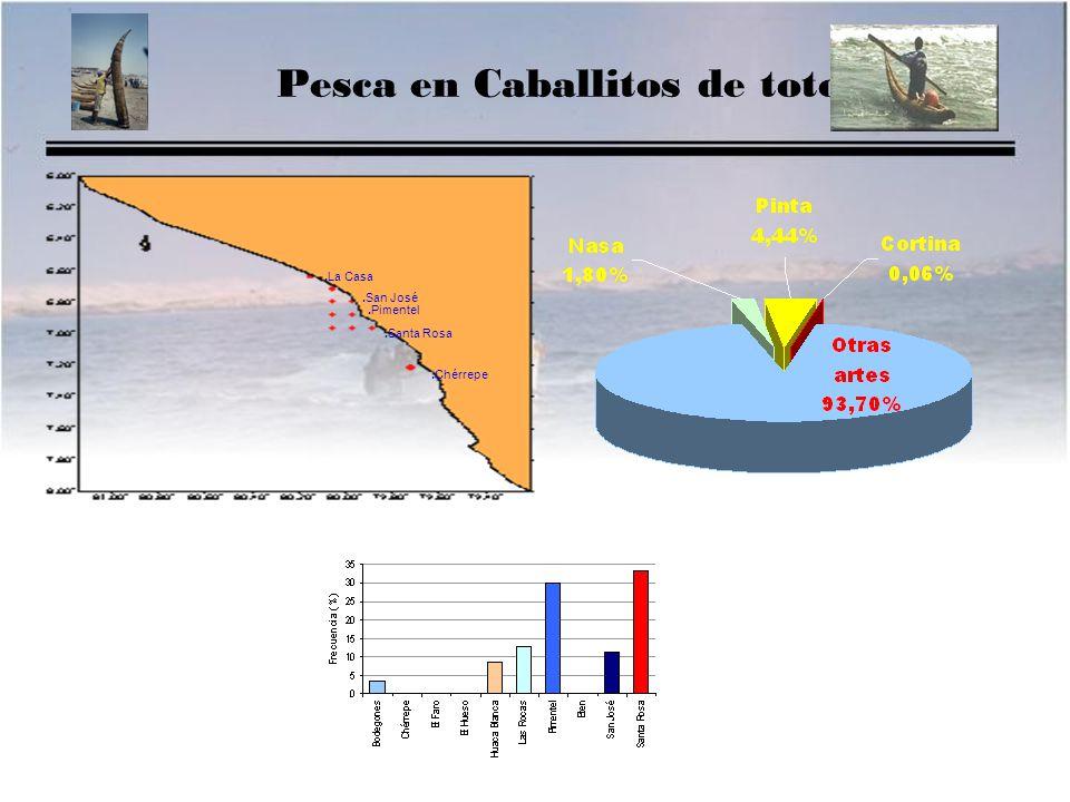 Pesca en Caballitos de totora.La Casa.San José.Santa Rosa.Chérrepe.Pimentel
