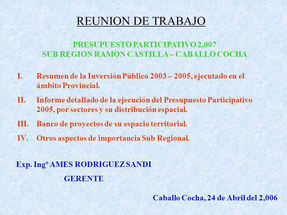 REUNION DE TRABAJO PRESUPUESTO PARTICIPATIVO 2,007 SUB REGION RAMON CASTILLA – CABALLO COCHA I.Resumen de la Inversión Público 2003 – 2005, ejecutado en el ámbito Provincial.