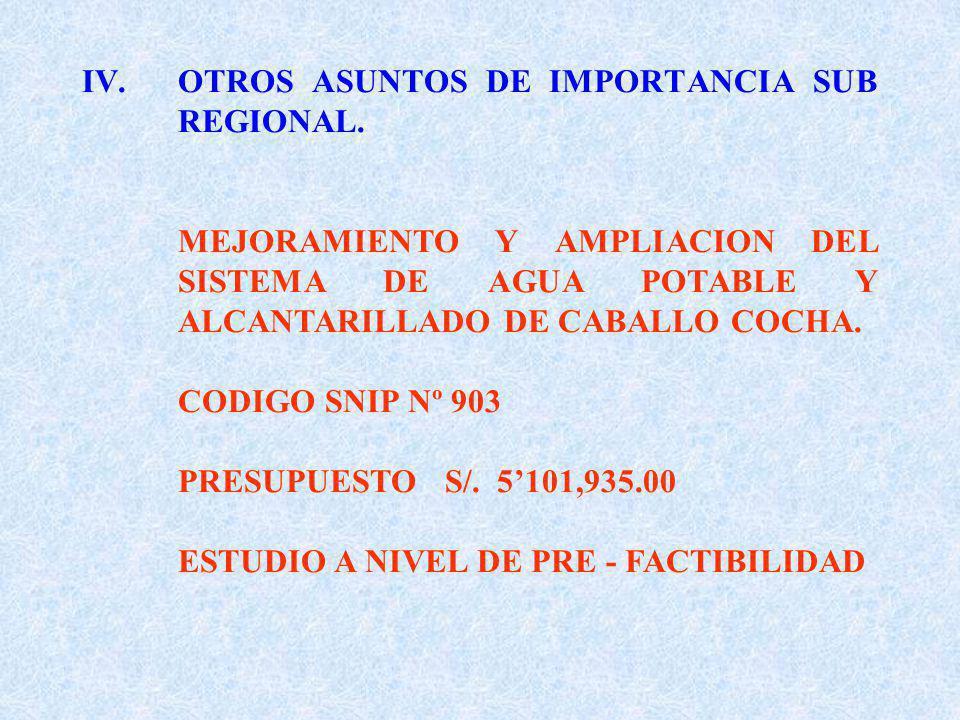 IV.OTROS ASUNTOS DE IMPORTANCIA SUB REGIONAL.
