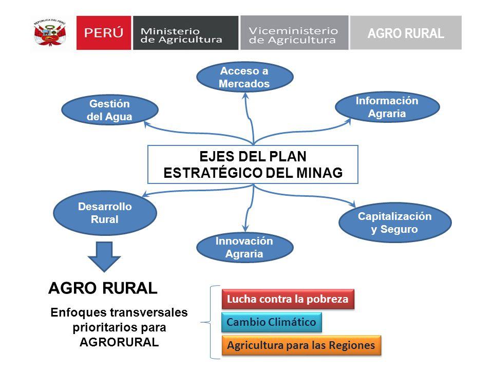 EJES DEL PLAN ESTRATÉGICO DEL MINAG Acceso a Mercados Gestión del Agua Información Agraria Desarrollo Rural Innovación Agraria Capitalización y Seguro