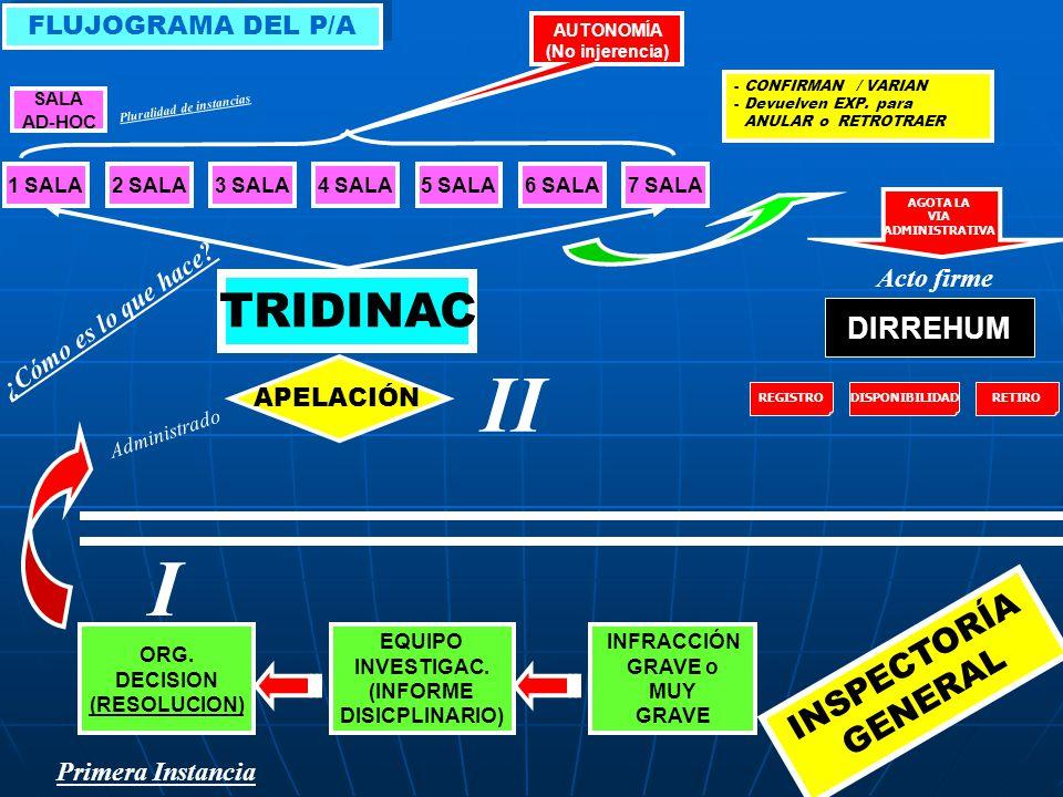 INFRACCIÓN GRAVE o MUY GRAVE ORG. DECISION (RESOLUCION) EQUIPO INVESTIGAC. (INFORME DISICPLINARIO) TRIDINAC 1 SALA2 SALA3 SALA4 SALA5 SALA6 SALA7 SALA