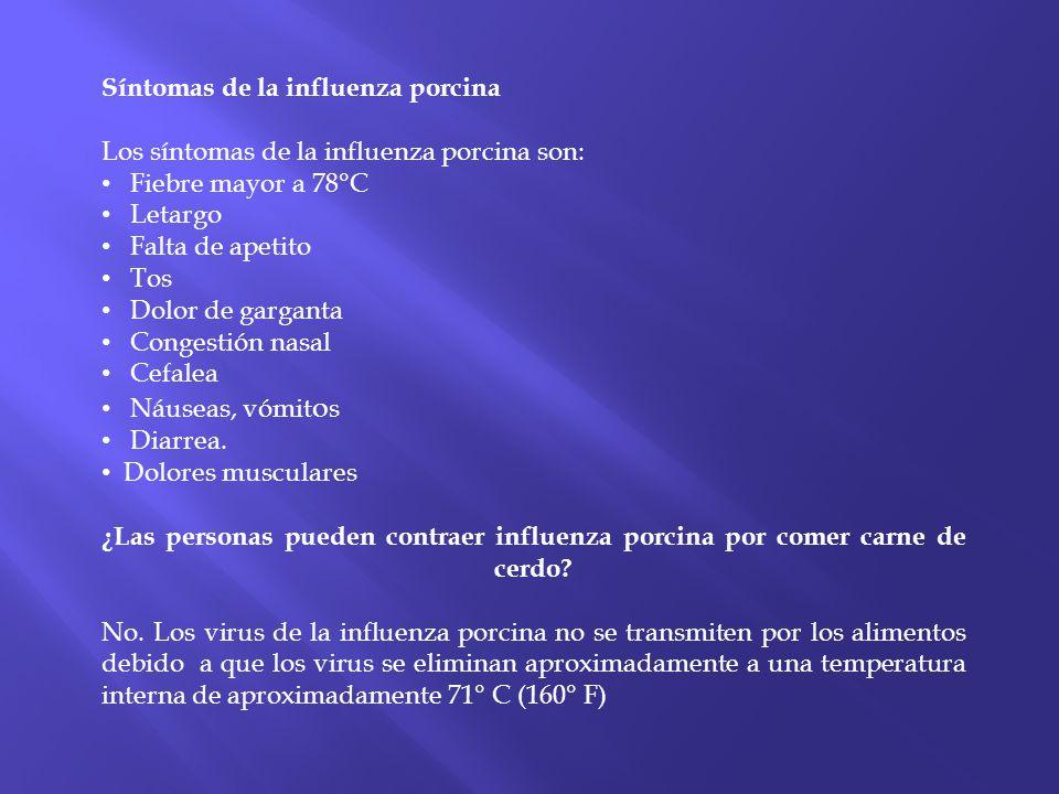 Síntomas de la influenza porcina Los síntomas de la influenza porcina son: Fiebre mayor a 78°C Letargo Falta de apetito Tos Dolor de garganta Congesti