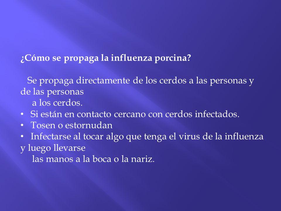 ¿Cómo se propaga la influenza porcina? Se propaga directamente de los cerdos a las personas y de las personas a los cerdos. Si están en contacto cerca