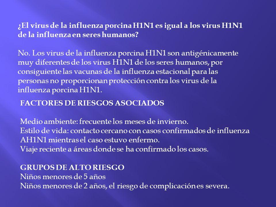 ¿El virus de la influenza porcina H1N1 es igual a los virus H1N1 de la influenza en seres humanos? No. Los virus de la influenza porcina H1N1 son anti