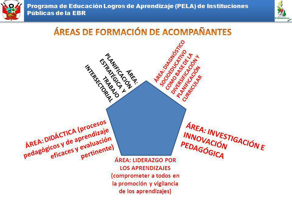 ÁREA: PLANIFICACIÓN ESTRATÉGICA Y TRABAJO INTERSECTORIAL ÁREA: DIAGNÓSTICO SOCIOEDUCATIVO COMO BASE DE LA DIVERSIFICACIÓN Y PLANIFICACIÓN CURRICULAR ÁREA: DIDÁCTICA (procesos pedagógicos y de aprendizaje eficaces y evaluación pertinente) ÁREA: INVESTIGACIÓN E INNOVACIÓN PEDAGÓGICA ÁREA: LIDERAZGO POR LOS APRENDIZAJES (comprometer a todos en la promoción y vigilancia de los aprendizajes)
