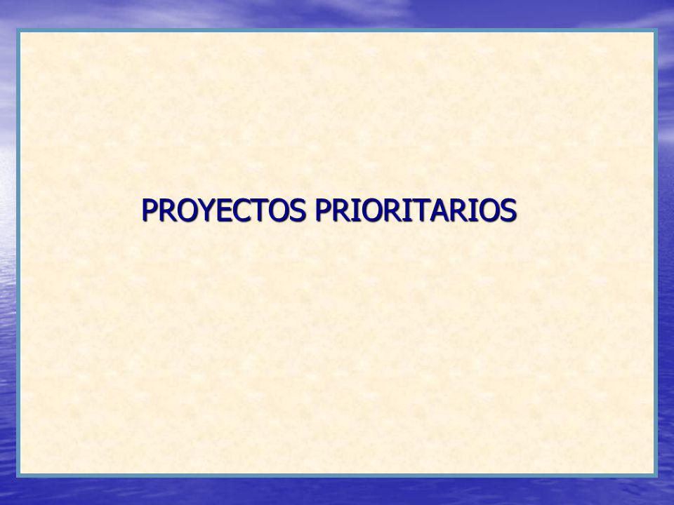 PROYECTOS PRIORITARIOS