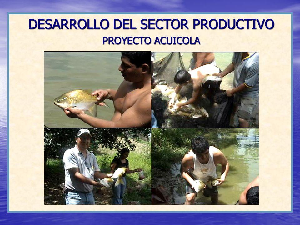 DESARROLLO DEL SECTOR PRODUCTIVO PROYECTO ACUICOLA