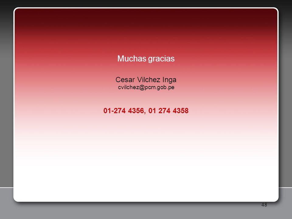 48 Muchas gracias Cesar Vilchez Inga cvilchez@pcm.gob.pe 01-274 4356, 01 274 4358