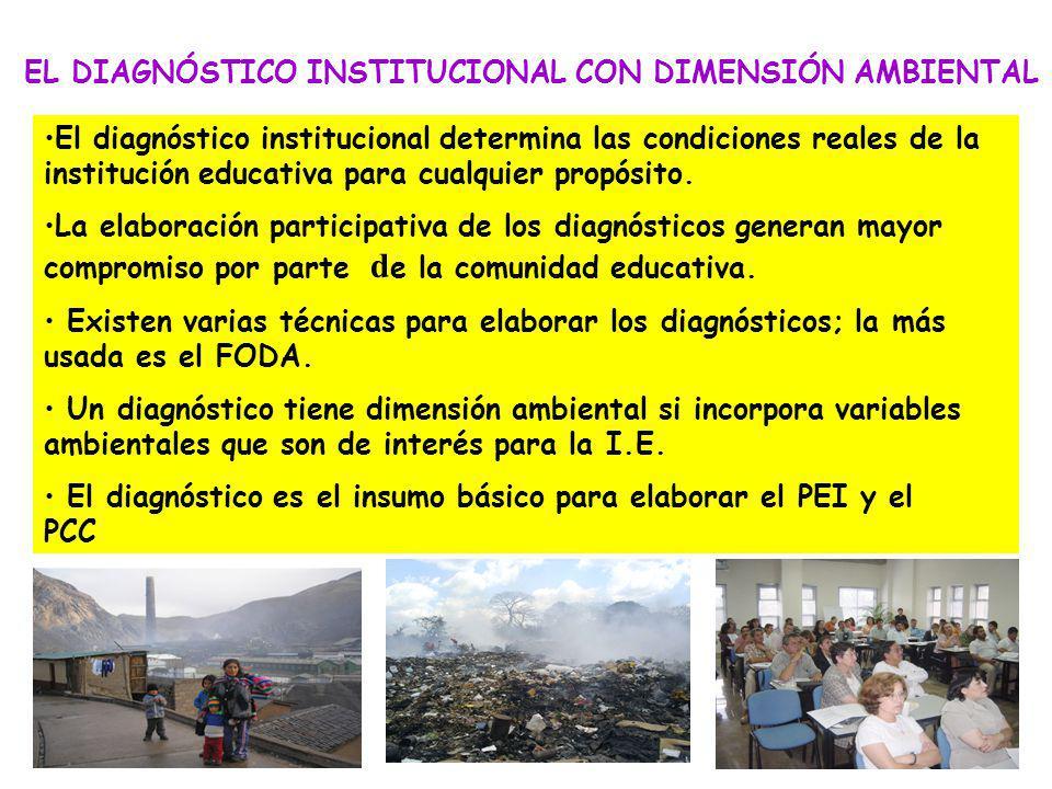 La conformación de la Brigada Ambiental, aprobada con RD de la I.E MIEMBROS: – Estudiantes ( pueden ser los Regidores Ambientales del Municipio Escola