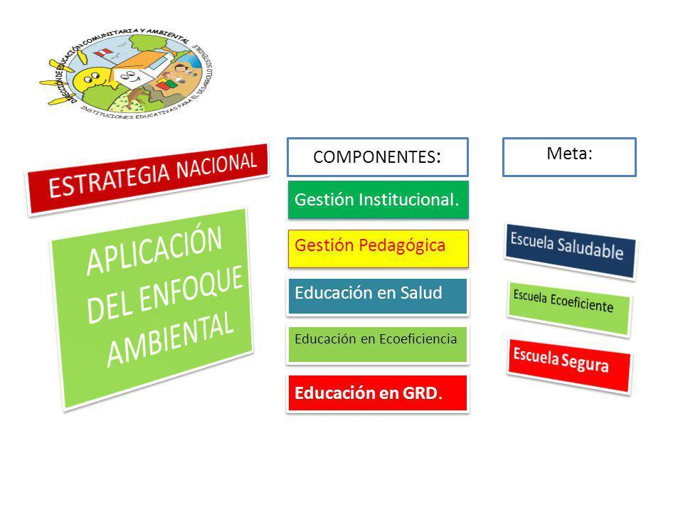 COMPONENTES : Gestión Institucional.