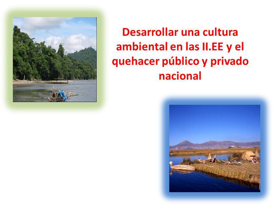 Desarrollar una cultura ambiental en las II.EE y el quehacer público y privado nacional