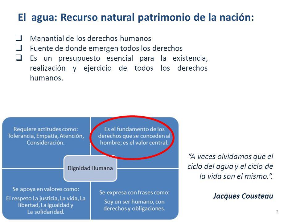DISPOSICIONES GENERALES El Agua es un recurso natural patrimonio de la Nación No hay propiedad privada sobre el agua.