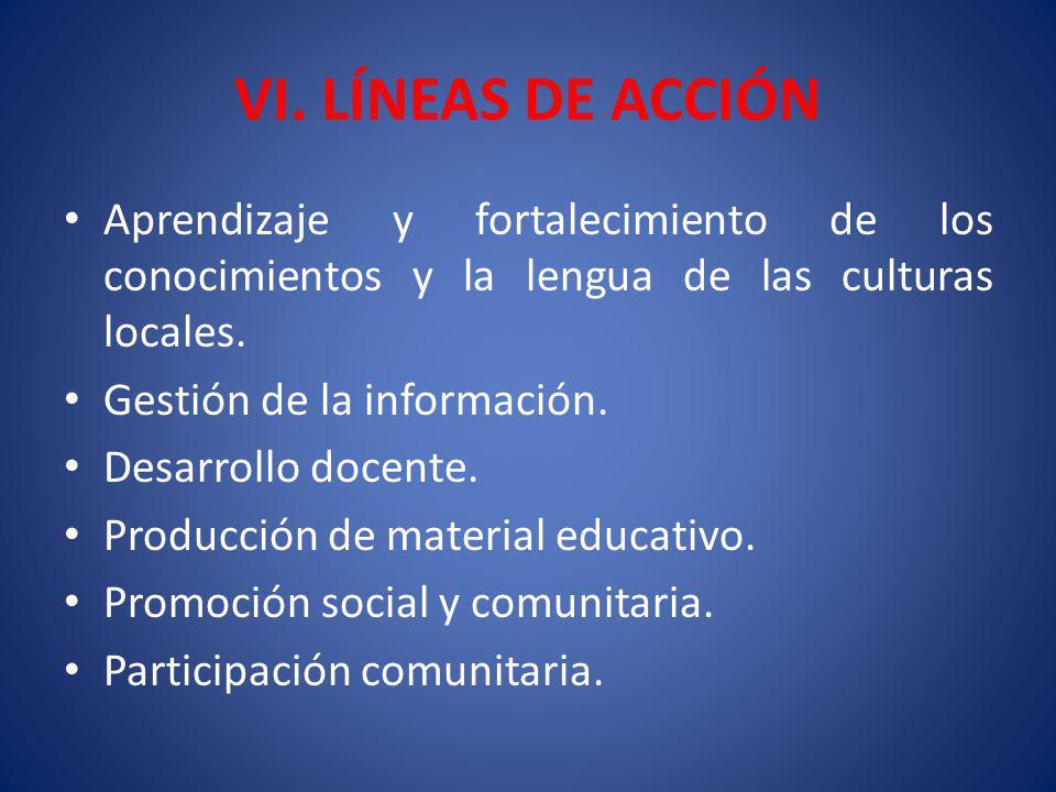 VI. LÍNEAS DE ACCIÓN Aprendizaje y fortalecimiento de los conocimientos y la lengua de las culturas locales. Gestión de la información. Desarrollo doc