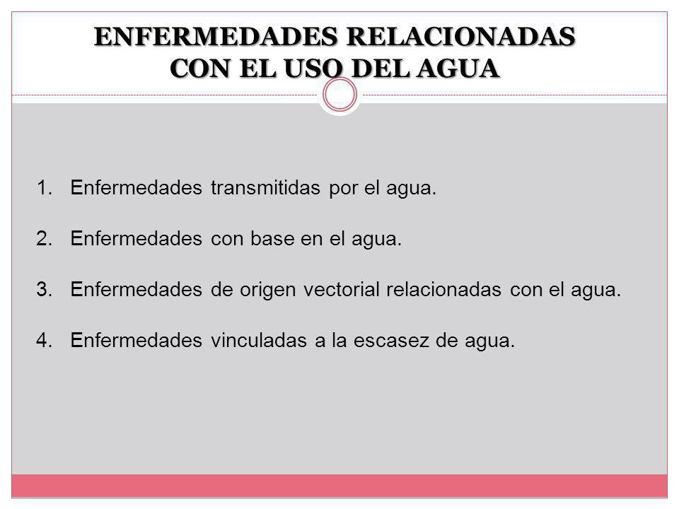 ENFERMEDADES RELACIONADAS CON EL USO DEL AGUA 1.Enfermedades transmitidas por el agua.