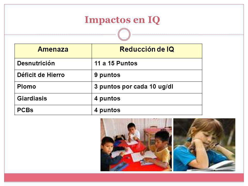 Impactos en IQ AmenazaReducción de IQ Desnutrición11 a 15 Puntos Déficit de Hierro9 puntos Plomo3 puntos por cada 10 ug/dl Giardiasis4 puntos PCBs4 puntos